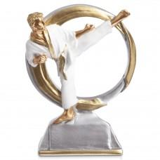Статуетка нагородна спортивна PlayGame Карате, код: HX5136-B16